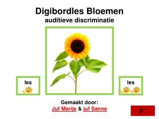 Digibordles  Bloemen auditieve discriminatie