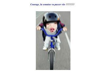Courage, la semaine va passer vite  !!!!!!!!!