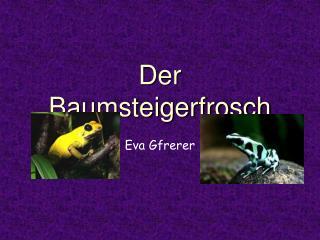 PPT - Steckbrief Süßgräser I: PowerPoint Presentation - ID ...