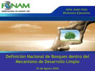Definición Nacional de Bosques dentro del  Mecanismo de Desarrollo Limpio 25 de Agosto 2006