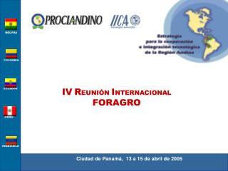 Ciudad de Panamá,  13 a 15 de abril de 2005
