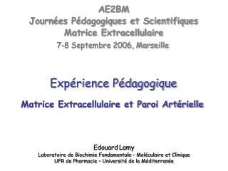 Matrice Extracellulaire et Paroi Artérielle