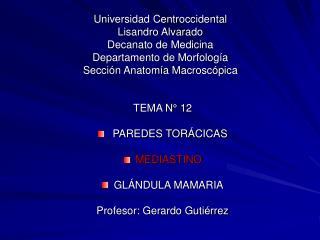 TEMA N° 12  PAREDES TORÁCICAS MEDIASTINO GLÁNDULA MAMARIA Profesor: Gerardo Gutiérrez