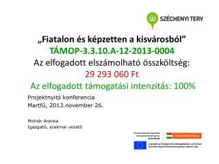 Projektnyitó konferencia  Martfű, 2013.november 26. Molnár Aranka Igazgató, szakmai vezető
