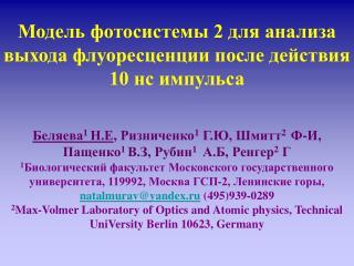 Модель фотосистемы 2 для анализа выхода флуоресценции после действия 10 нс импульса