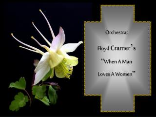 Orchestra : Floyd  Cramer � s � When A Man Loves A Women �