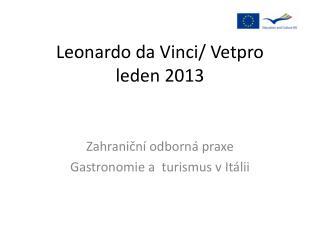 Leonardo da  Vinci/  Vetpro leden 2013