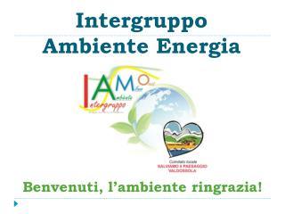Intergruppo  Ambiente Energia