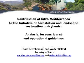 Contribution of Silva Mediterranean