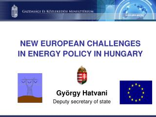NEW EUROPEAN CHALLENGES IN ENERGY POLICY IN HUNGARY