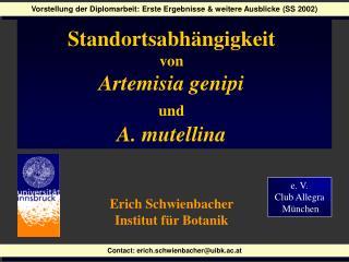 e. V.  Club Allegra  München