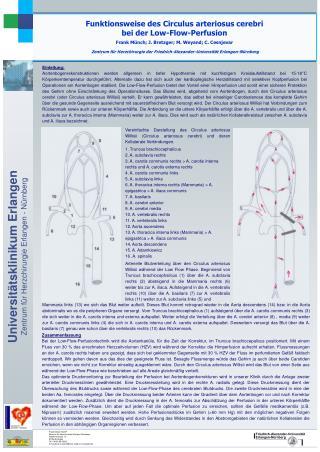 Funktionsweise des Circulus arteriosus cerebri  bei der Low-Flow-Perfusion