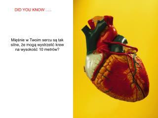 Mięśnie w Twoim sercu są tak silne, że mogą wystrzelić krew na wysokość 10 metrów?