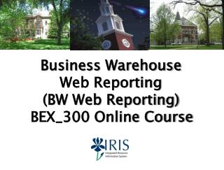 Business  Warehouse Web Reporting (BW Web Reporting) BEX_300 Online Course