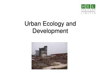 Urban Ecology and Development