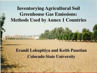 Inventorying Agricultural Soil Greenhouse Gas Emissions:  Methods Used by Annex 1 Countries