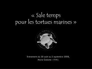 ��Sale temps pour les tortues marines��