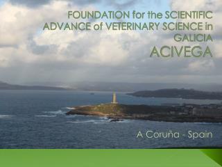 FOUNDATION for the  SCIENTIFIC ADVANCE of VETERINARY SCIENCE in GALICIA ACIVEGA