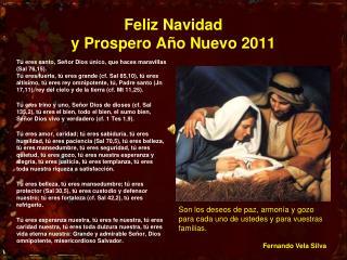 Feliz Navidad  y Prospero Año Nuevo 2011