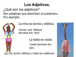 Los Adjetivos.