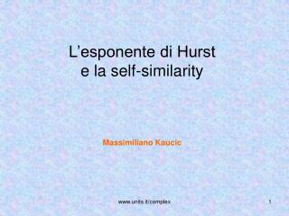 L'esponente di Hurst e la self-similarity Massimiliano Kaucic