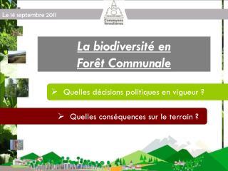 La biodiversité en  Forêt Communale