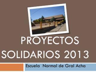 Proyectos solidarios 2013