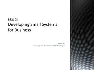 BT2103 Developing Small Systems for Business