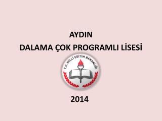 AYDIN  DALAMA �OK PROGRAMLI L?SES?       2014