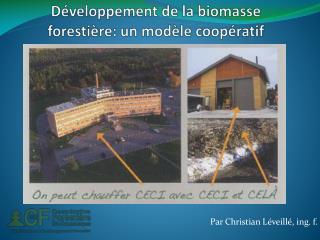 Développement de la biomasse forestière: un modèle coopératif