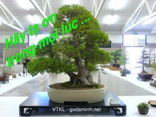 VTKL - gxdaminh