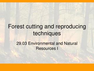 Forest cutting and reproducing techniques
