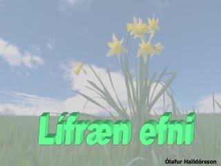 Lífræn efni