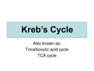 Also known as: Tricarboxylic acid cycle TCA cycle