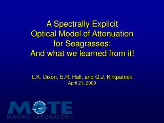 A Spectrally Explicit  Optical Model of Attenuation  for Seagrasses: And what we learned from it!