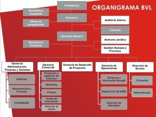 ORGANIGRAMA BVL