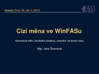 Cizí měna ve  WinFASu