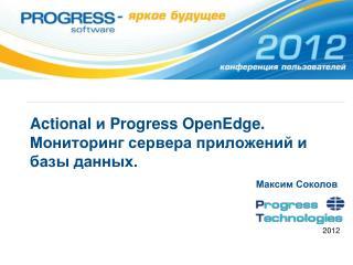 Actional и  Progress  OpenEdge . Мониторинг сервера приложений и базы данных.