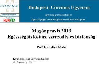 Magánpraxis 2013 Egészségbiztosítás, szerződés és biztonság Prof. Dr. Gulácsi László