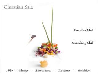 Christian  Sala