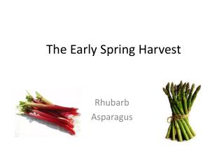 The Early Spring Harvest