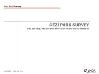 GEZİ PARK SURVEY Who are they, why are they there and what do they demand?