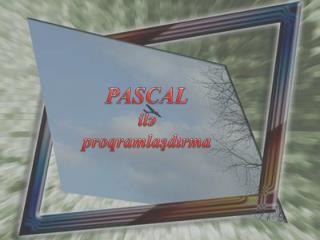 PASCAL i lə proqramlaşdırma