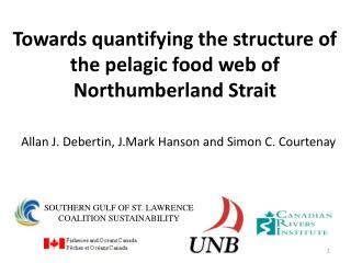 Towards quantifying the structure of the pelagic food web of Northumberland Strait