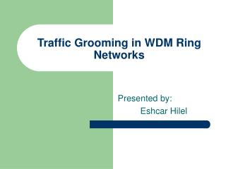 Traffic Grooming in WDM Ring Networks