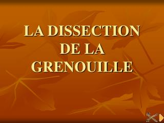 LA DISSECTION DE LA  GRENOUILLE