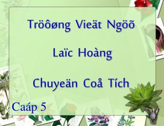 Tröôøng  Vieät  Ngöõ  Laïc  Hoàng Chuyeän  Coå  Tích
