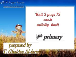 Unit 3 page 13 exe.6  activity  book