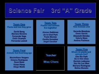 """Science Fair    3rd """"A"""" Grade"""