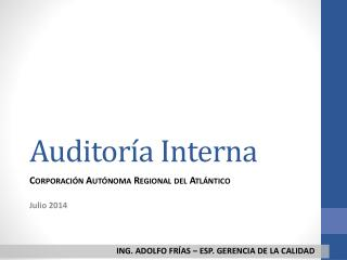 Auditor�a Interna